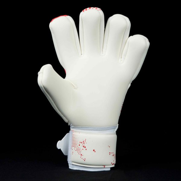 Apex GK Icon Goalkeeper Glove Palm 2017