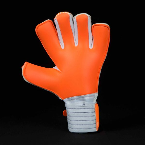 Fission GK Icon Goalkeeper Glove Palm 2017