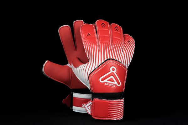Velocity GK Icon Goalkeeper Gloves 2017